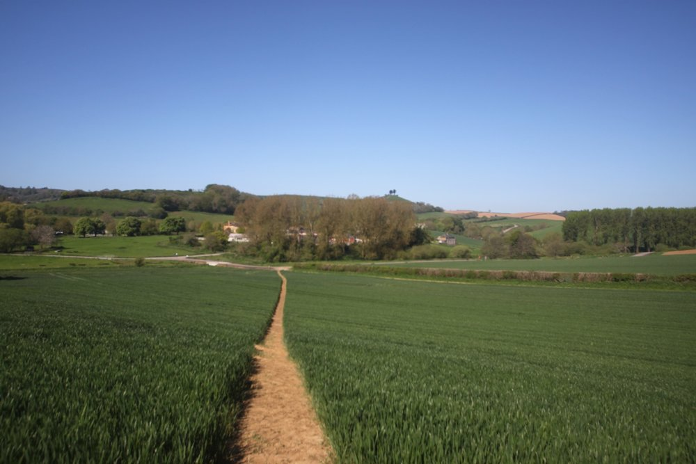 allington hill 7.jpg