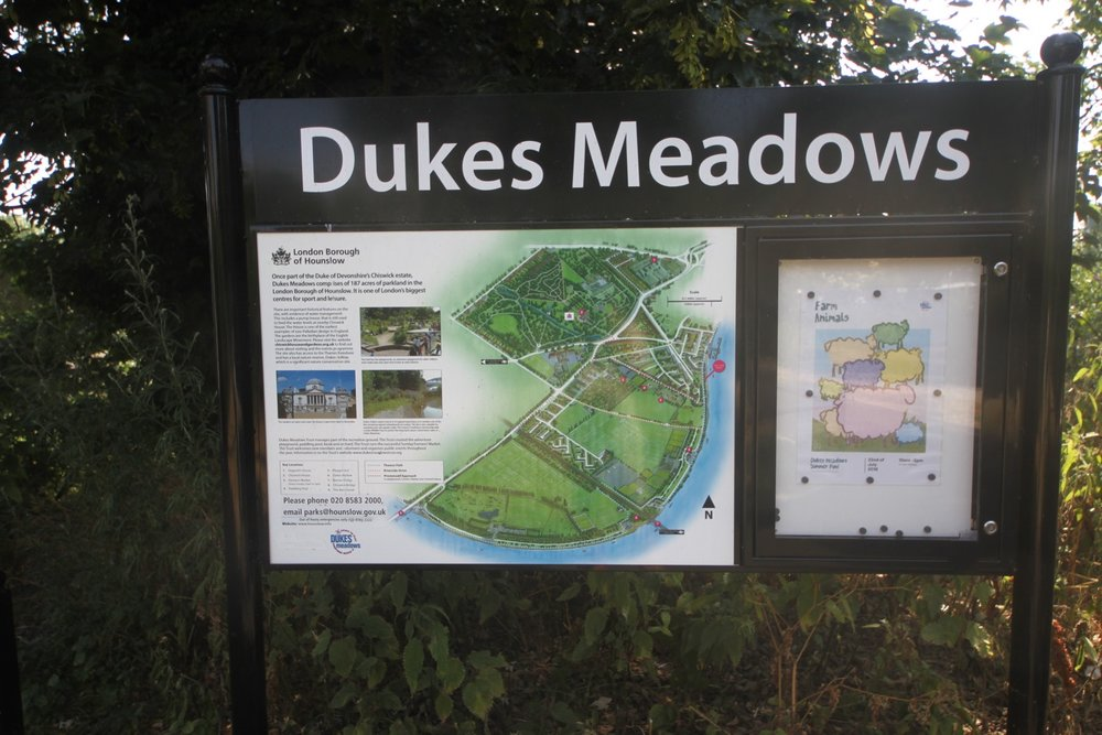 dukes meadow 3.jpg