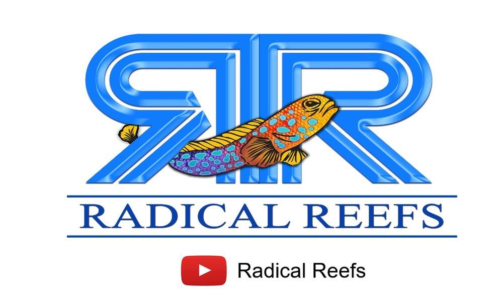 radical reefs.jpg