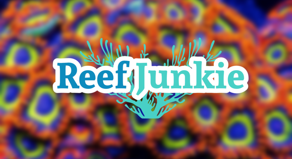 reef junkies.png