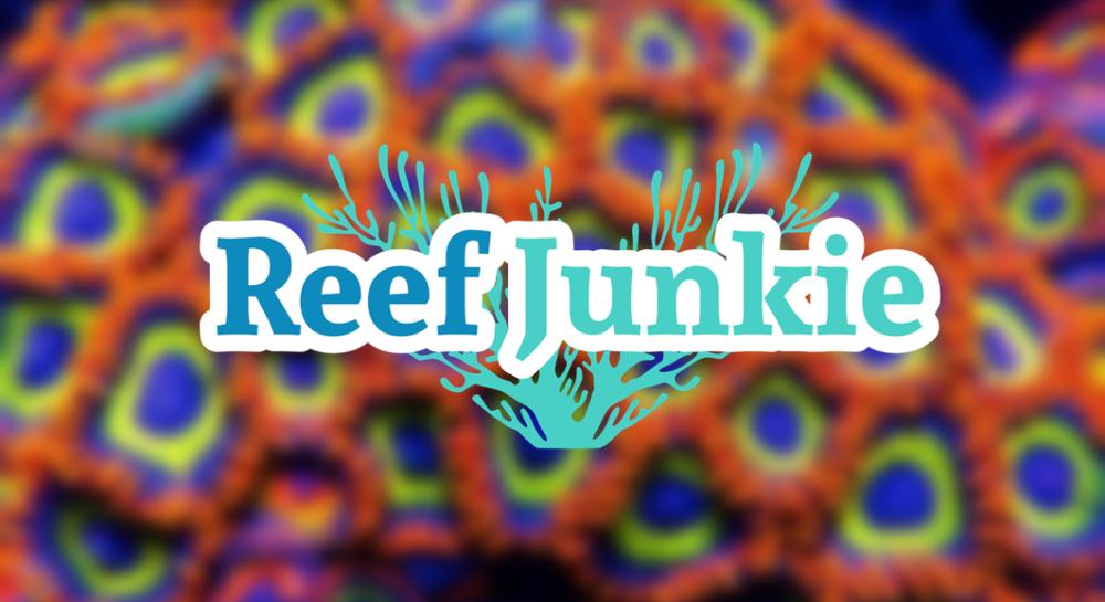 reef junkies.png
