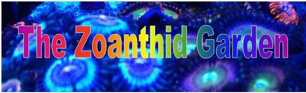 zoanthid garden logo.jpg