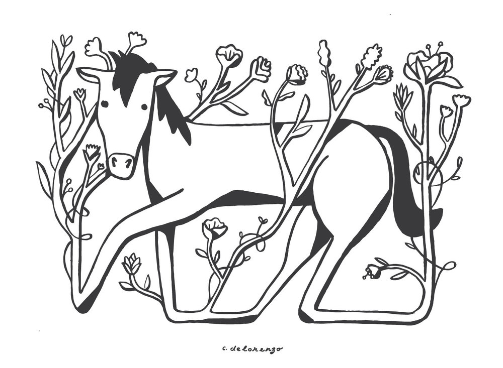 HorseFlower.jpg