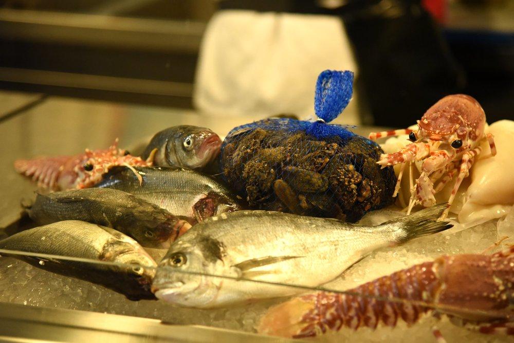 Fresh fish (photo Toney Teddy Fernandez)