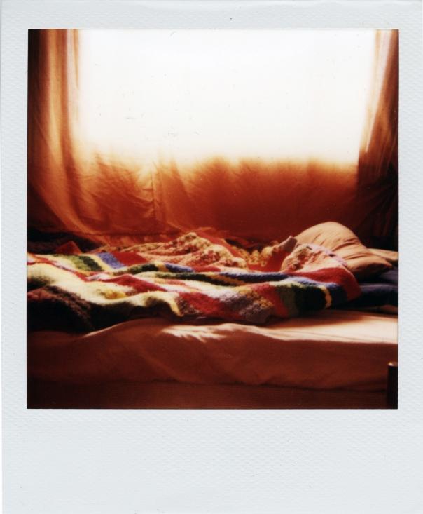 polaroid-ii.jpg