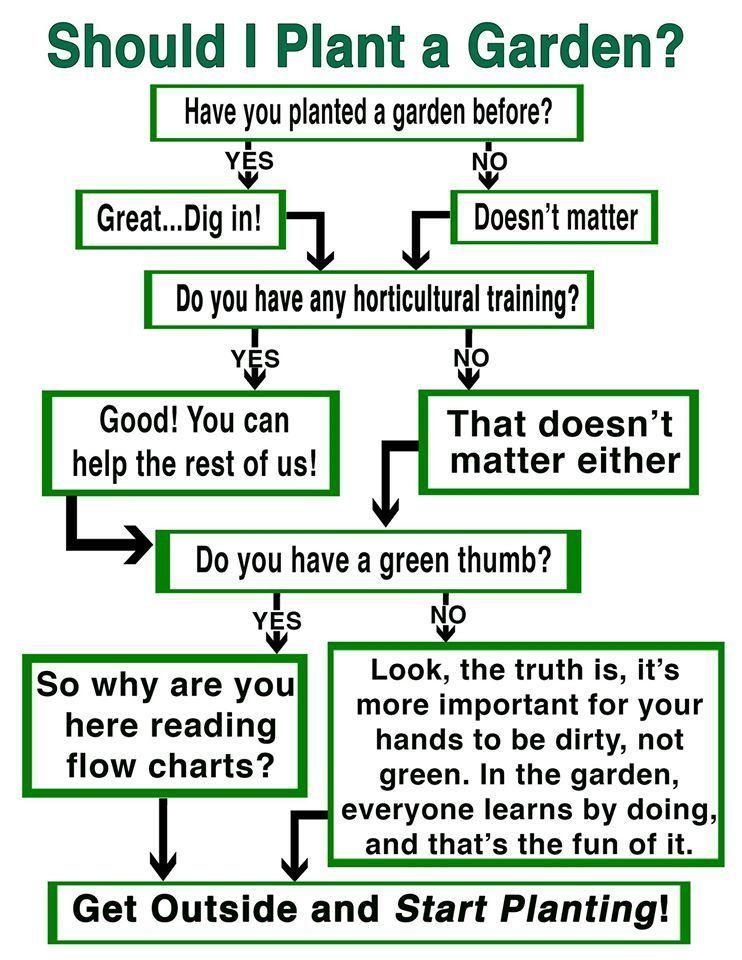 should i plant a garden.jpg