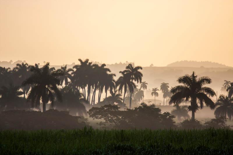Near Cayo Santa Maria, Cuba (2013)