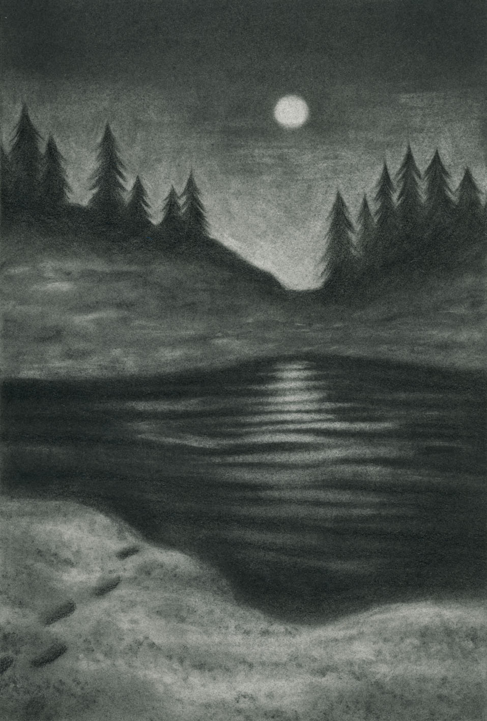 Edge of the Mere , graphite on paper, 2017-2018