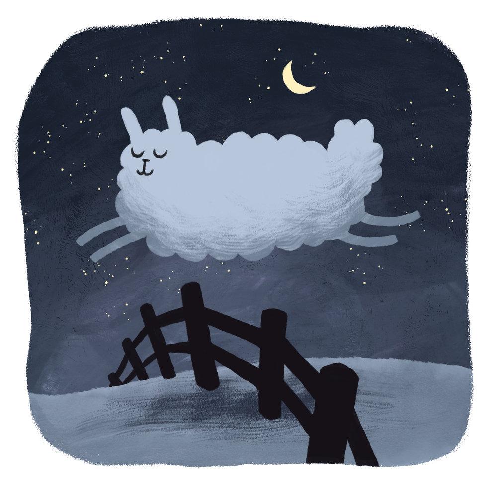 1-sheep.jpg