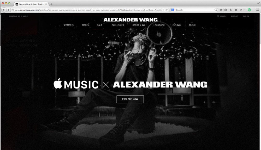 Alexander Wang - Website takeover
