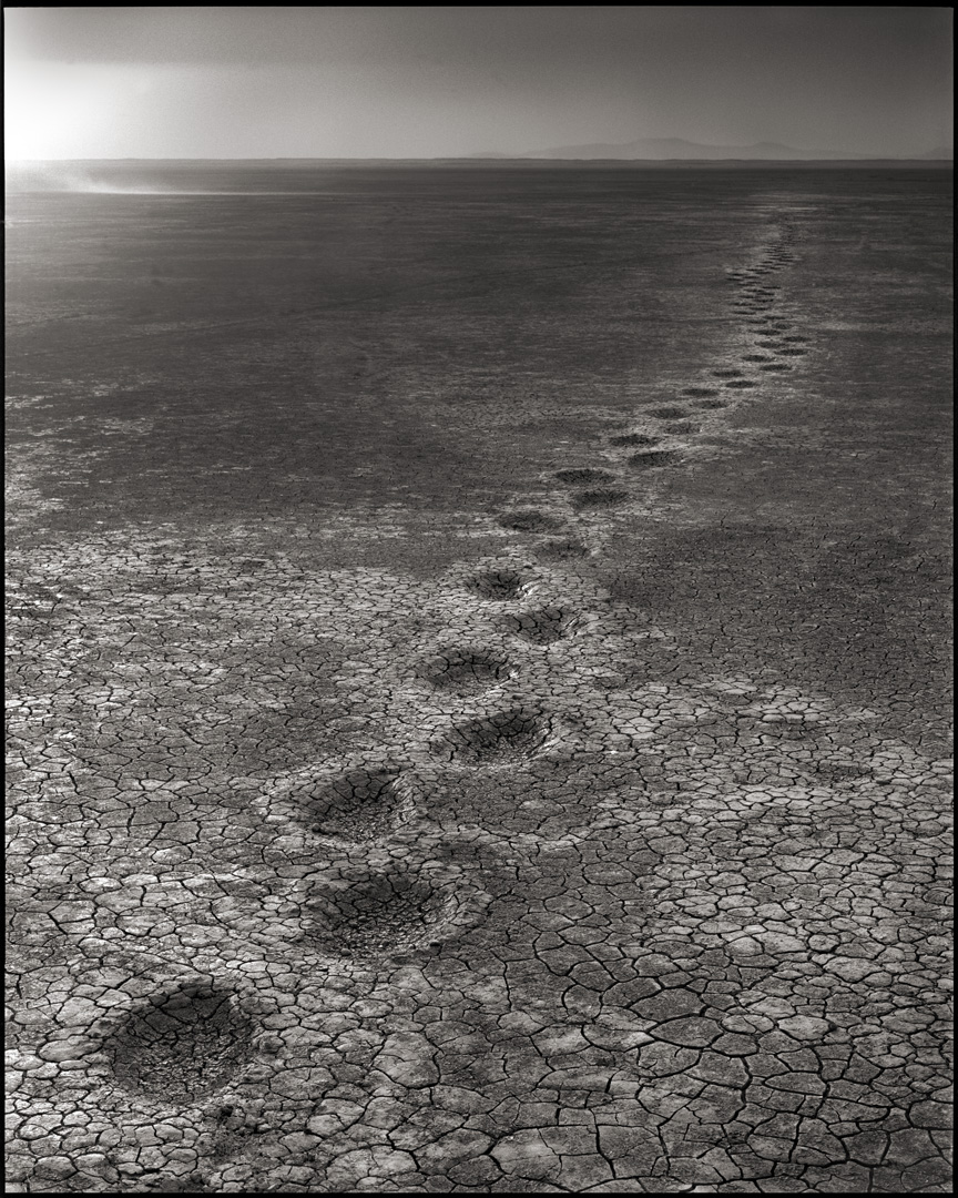 © Nick Brandt, Elephant Footprints, Amboseli, 2012. Courtesy of the Artist and Hasted Kraeutler, NYC.