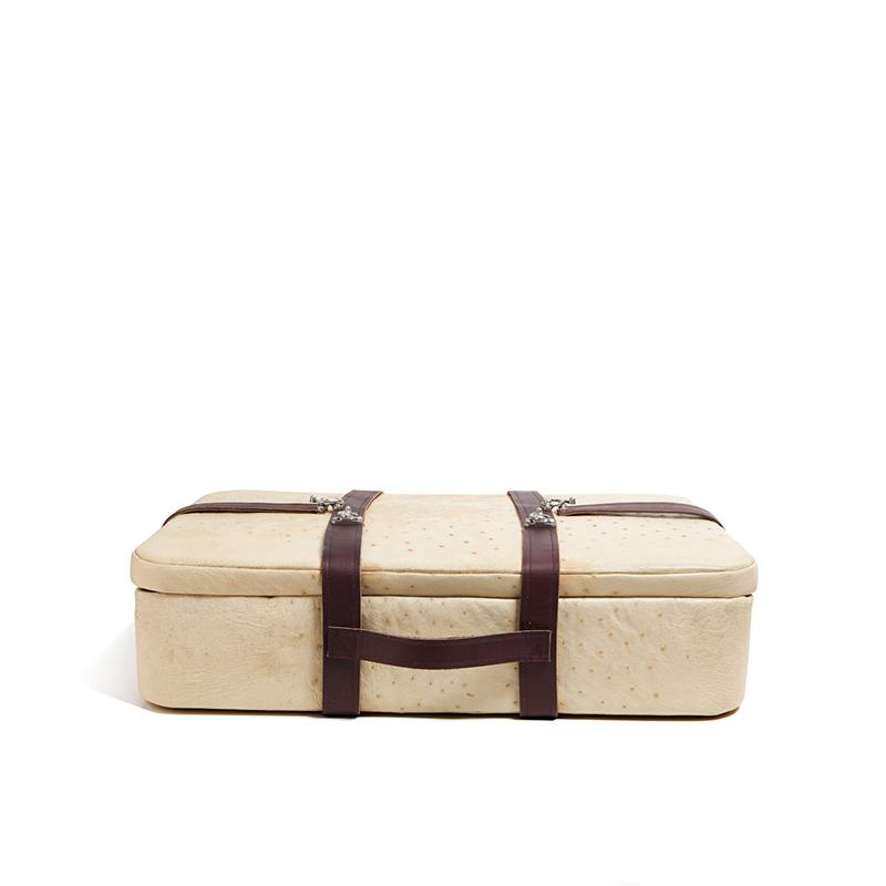 ostrich_suitcase_1.jpg