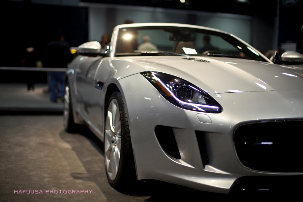Jaguar FType Side Light.jpg