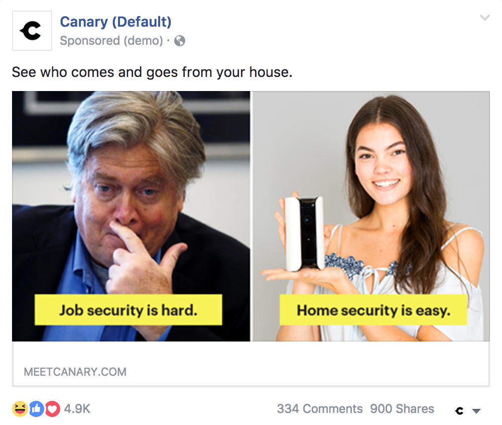 canary_bannon_facebook