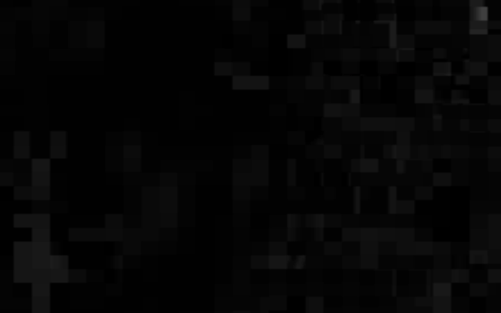 Black and Black, 2012
