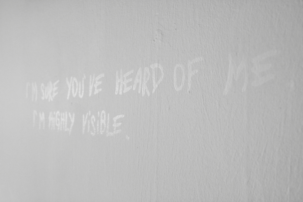 Highly Visible (install), 2013