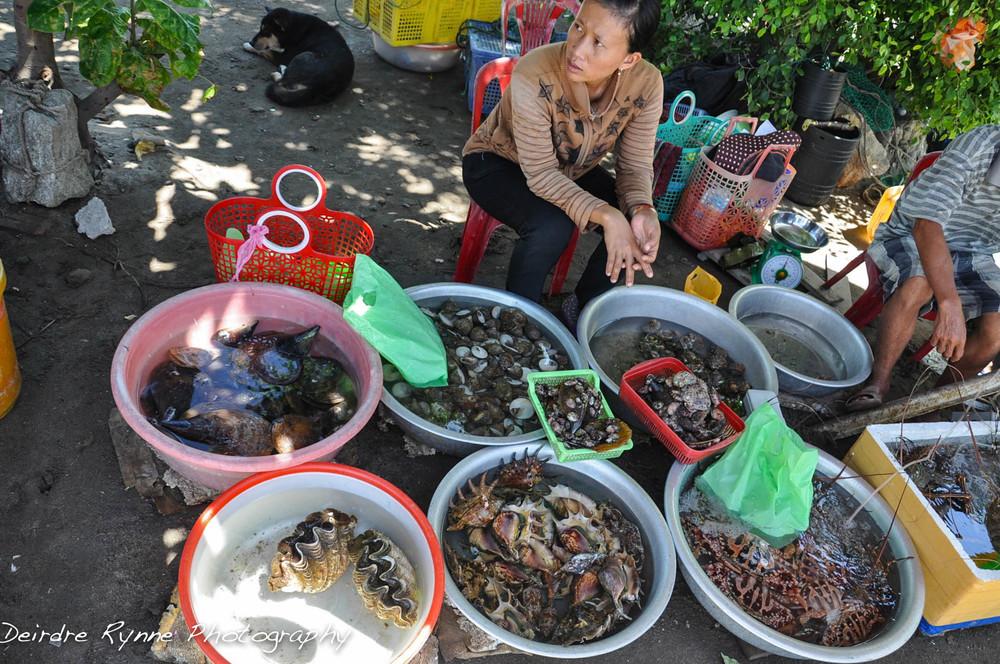 Fish Market- Cham Islands, Vietnam. August, 2012