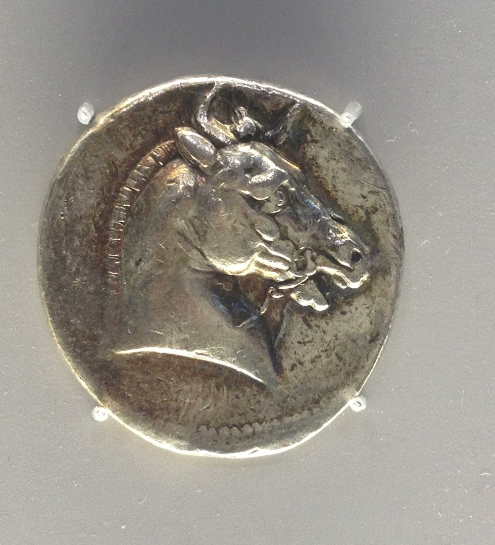 Tetradrachm of Horse Head