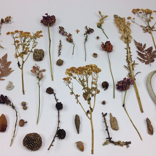 Inspiration #picture from the photo shoot table in the #studio #textiledeisgn #wildflowers #planetariumdesign