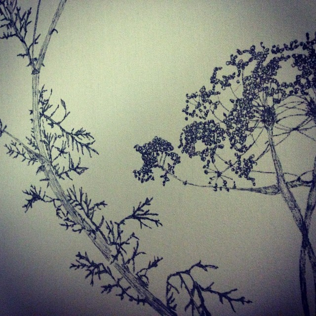 #ink #illustration of #wildflowers