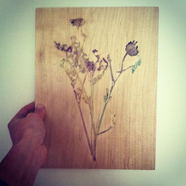 #wildflowers #maple #print #planetariumdesign