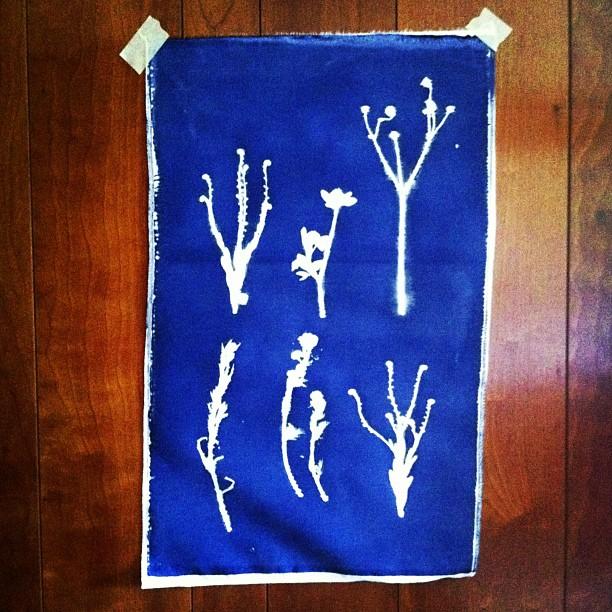 #blue #ink #screenprint #wall #art