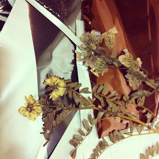 #dry #wildflowers and #foil
