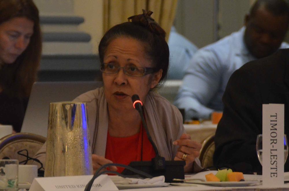 L'envoyée spéciale du g7+, Son Excellence Emilia Pires, a assisté à une réunion avec le IDPS.