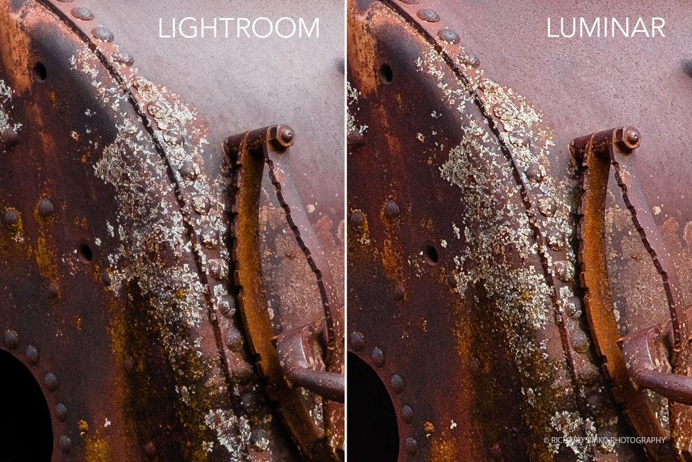 Detail comparison between processed image from Lightroom and Luminar file at 1:1