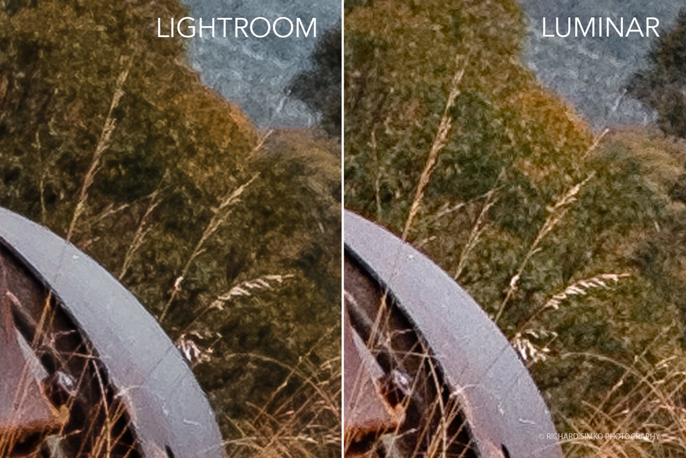 Detail comparison between processed image from Lightroom and Luminar file at 3:1