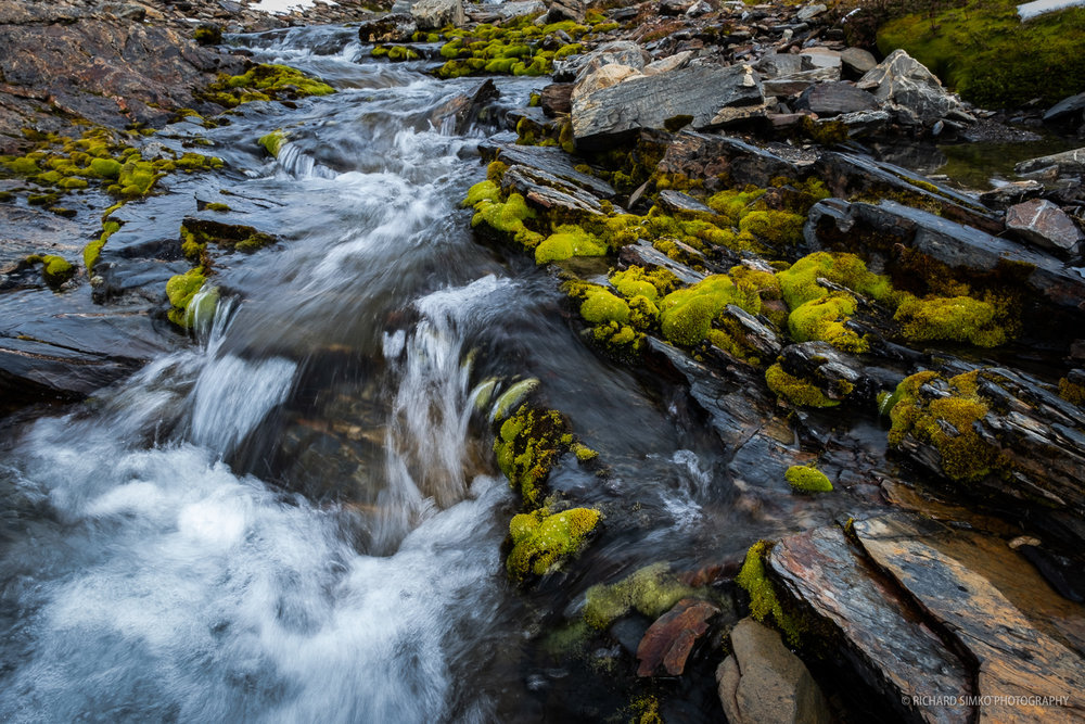 Green moss is nicely contrasting with grey stones and pure clear water stream.