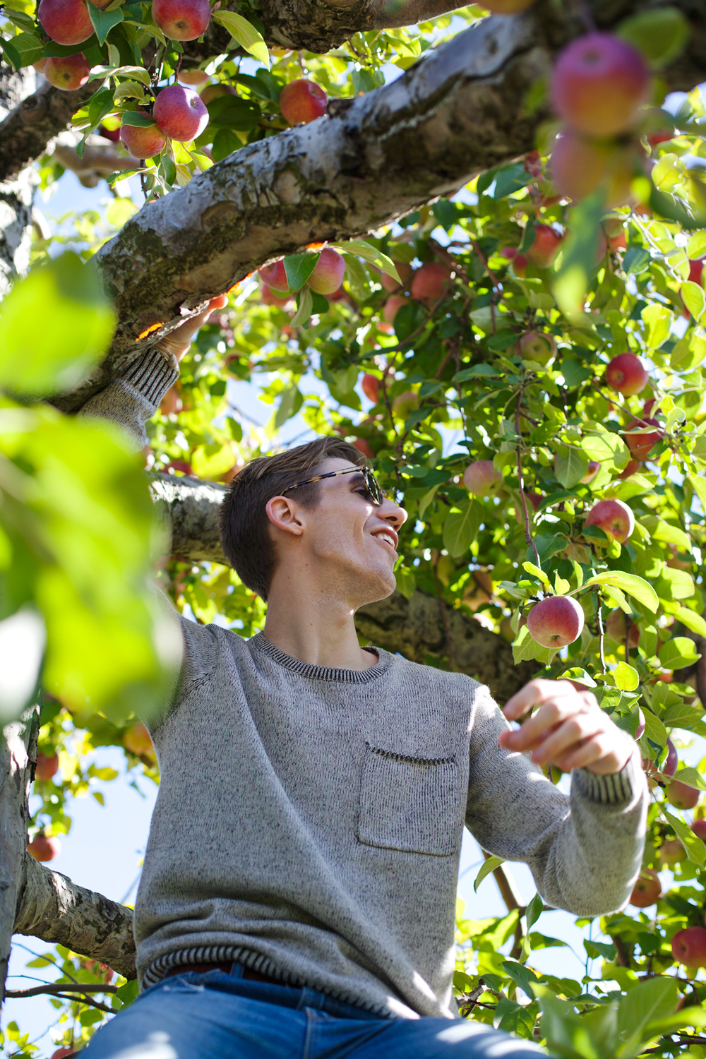 ApplePicking-05.jpg