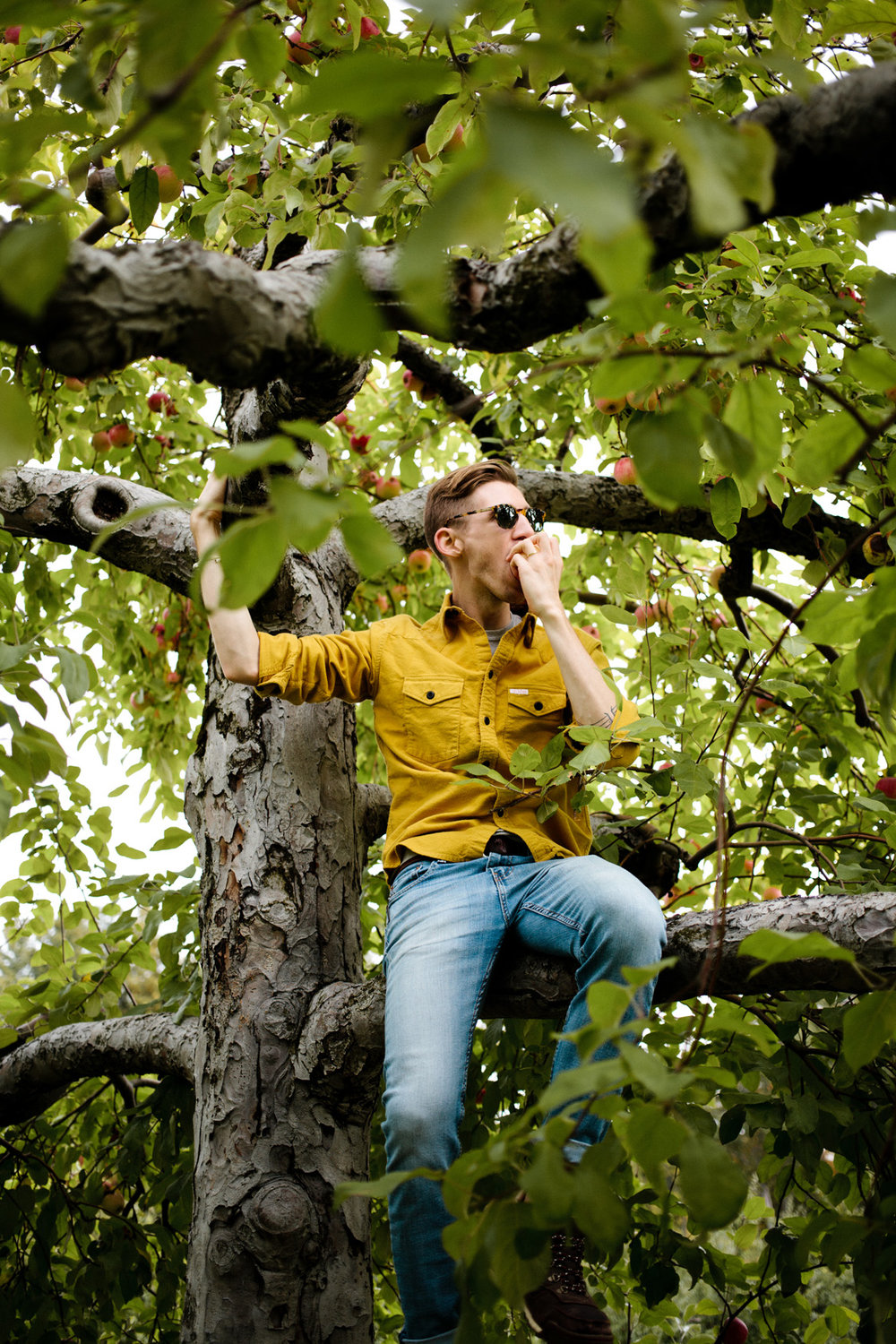 ApplePicking-8.jpg