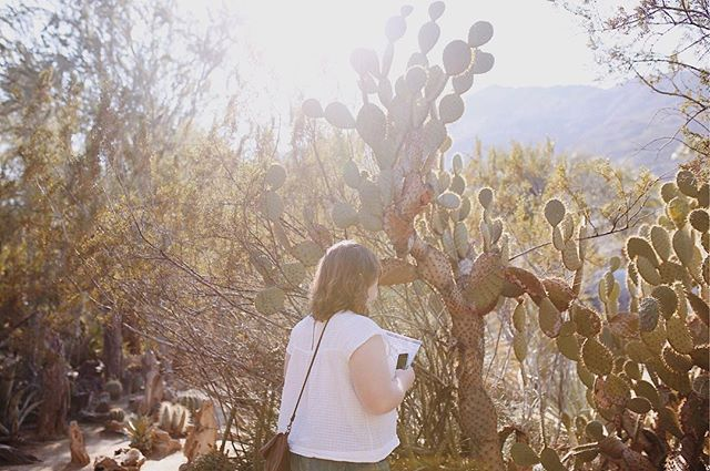wondering how many cacti we can stuff in our suitcases to bring home 🌵 • • • • • #aquietstyle #mytinyatlas #thatsdarling #darlingweekend #ABMtravelbug #suitcasetravels #tlpicks #dametraveler #liveauthentic #flashesofdelight #seekthesimplicity #momentsofmine #lovelysquares #pursuepretty #ilovepalmsprings #palmsprings #thehappynow #desertvibes #mydomainetravels #themoderndayexplorer #staywander #desertmag #visitcalifornia #TellOn