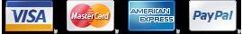 VISA Mastercard AmEx and PayPal