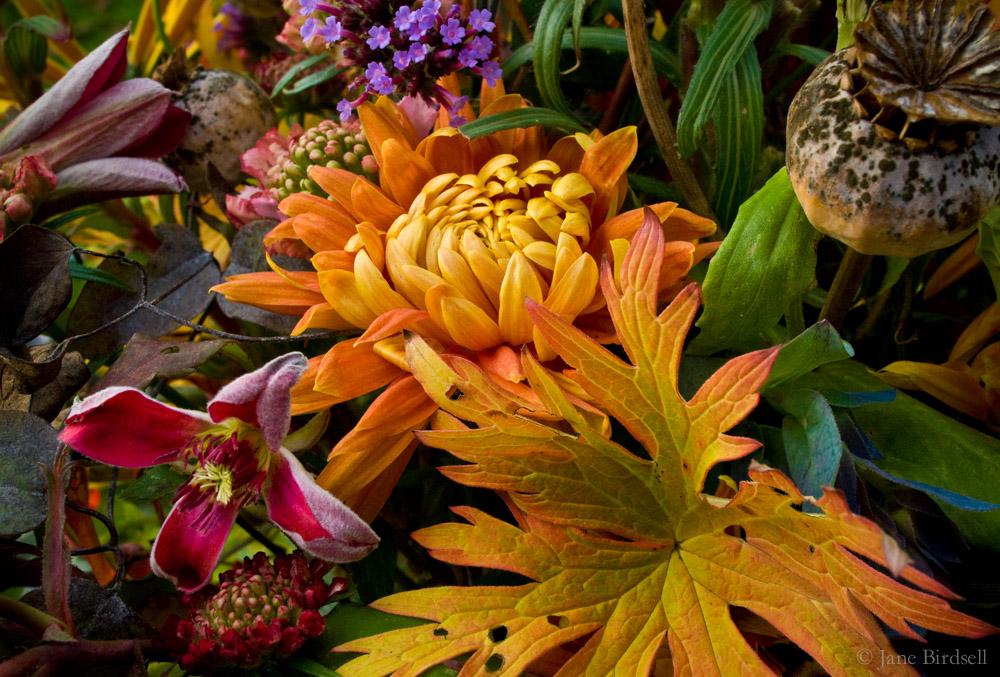 November vase