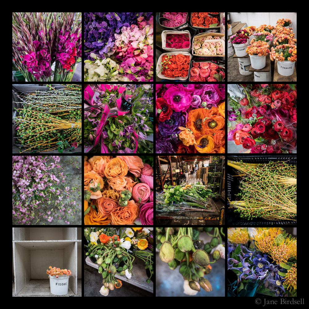 San Francisco Flower Market, April