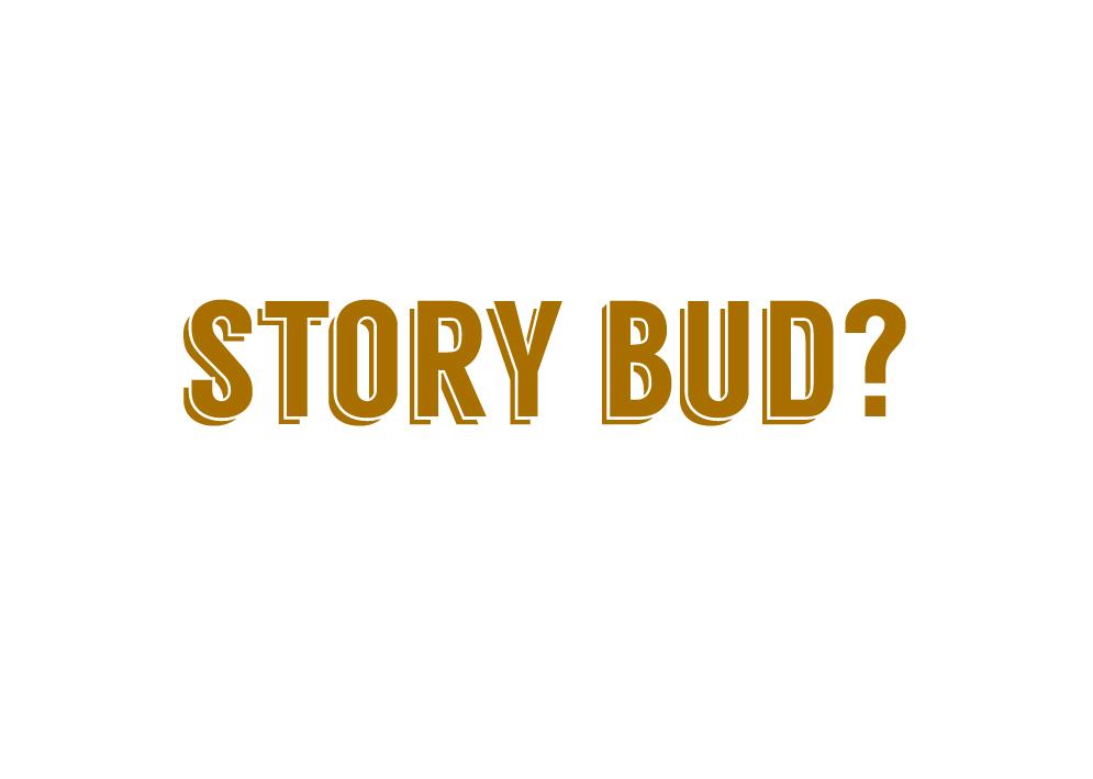 story bud.jpg