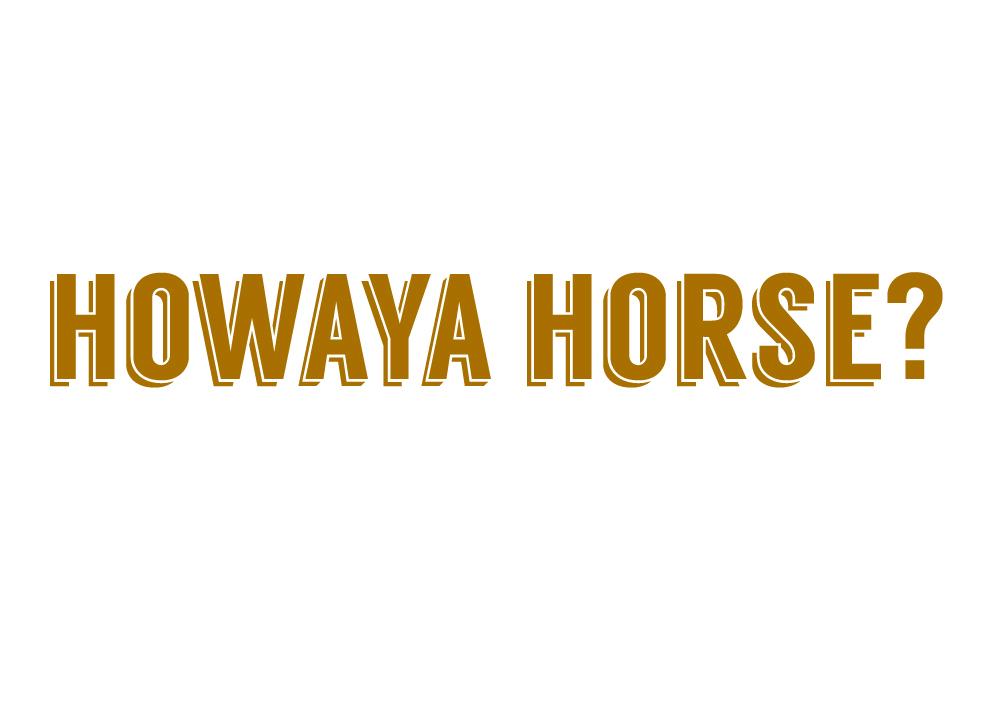 howaya horse.jpg