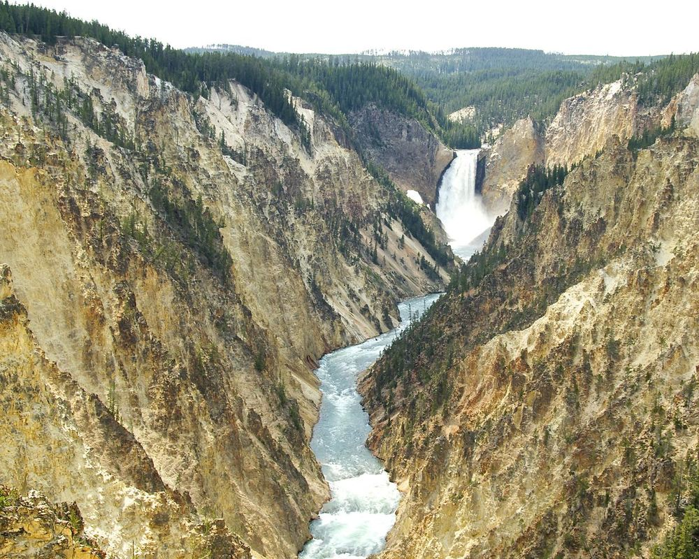 Grand Canyon of Yellowstone National Park.