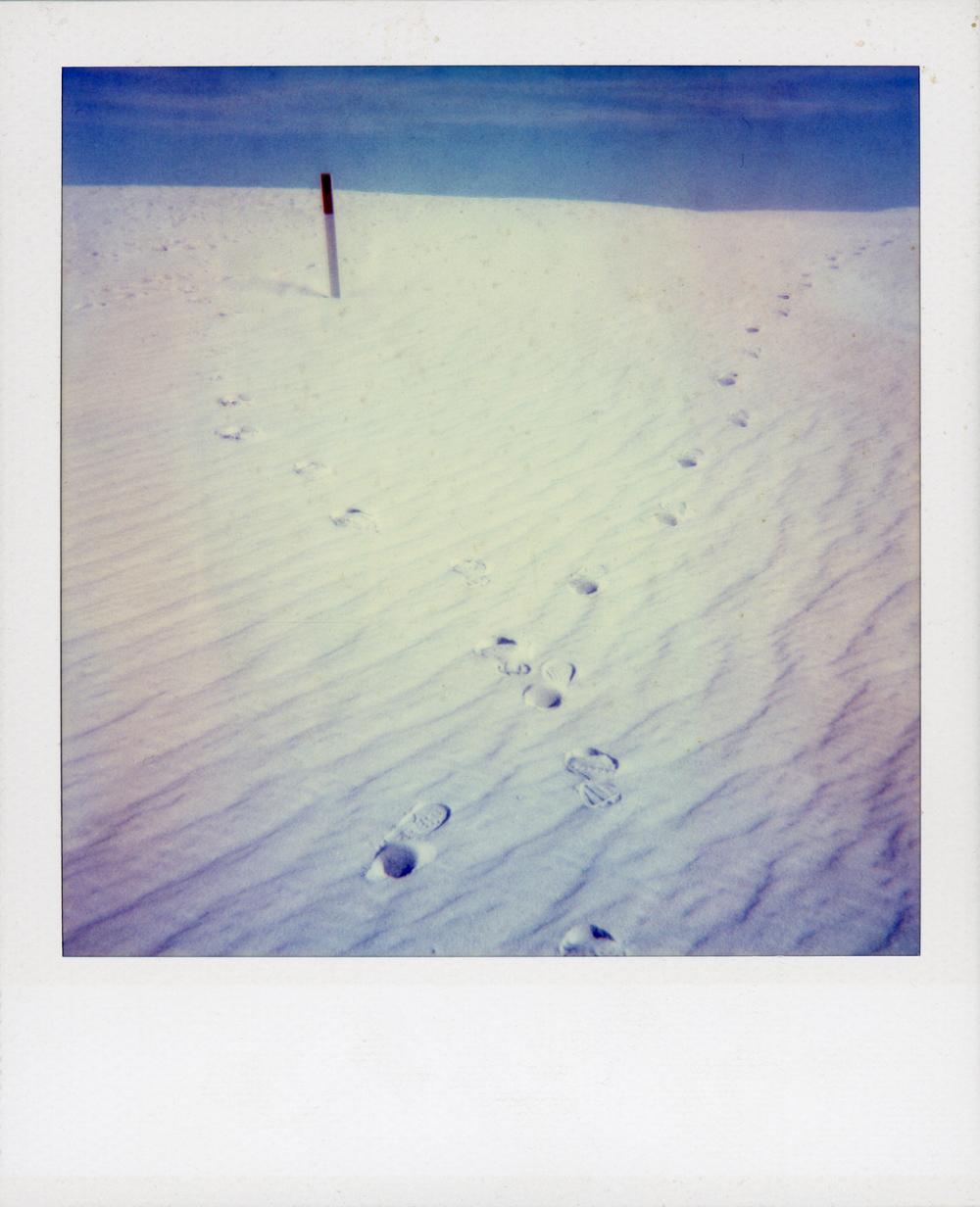 polaroid 102.jpg