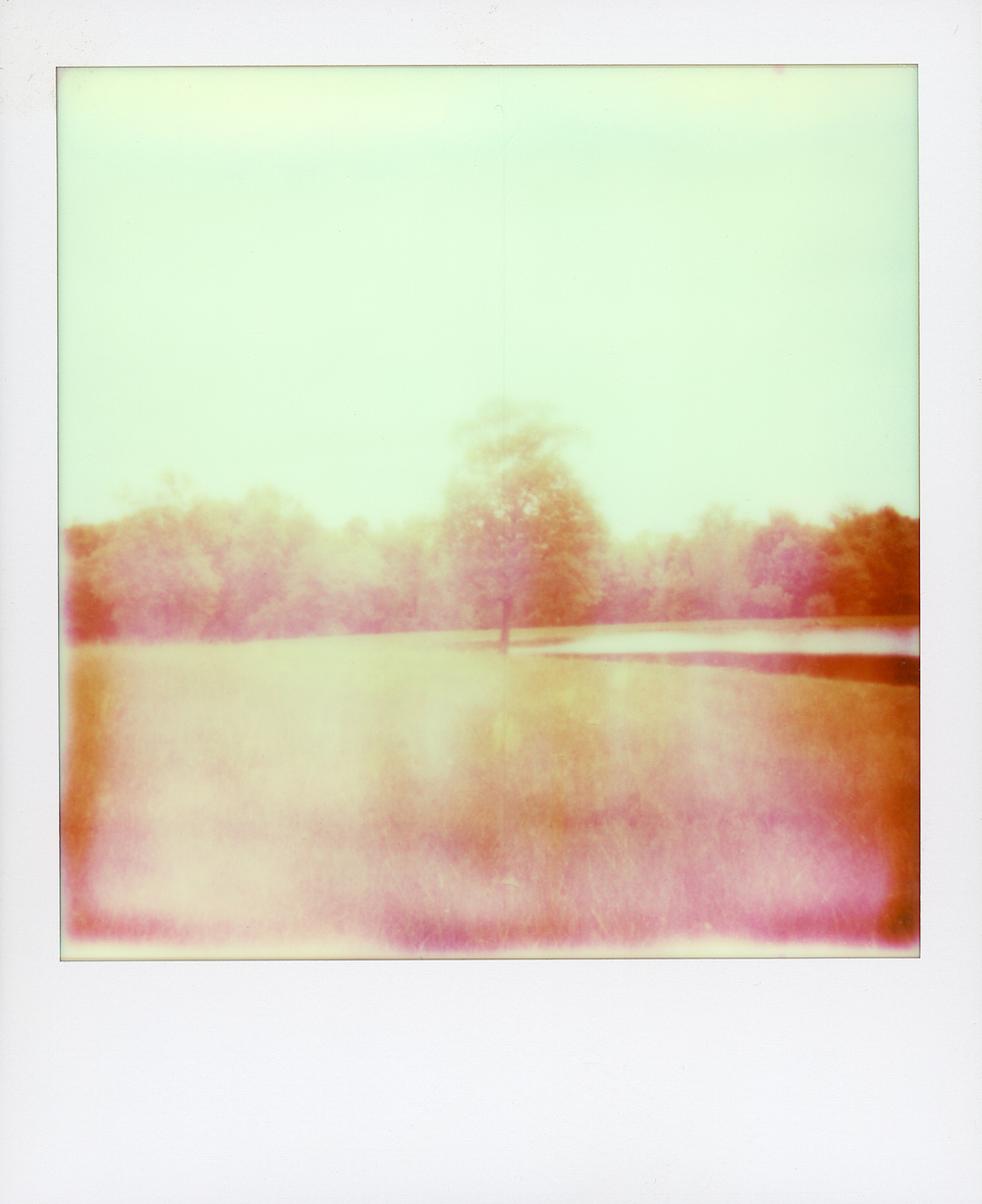 polaroid summer 13001.jpg