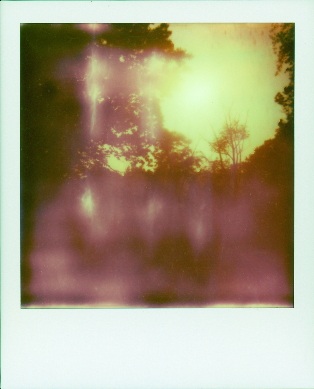 polaroid summer 13002.jpg