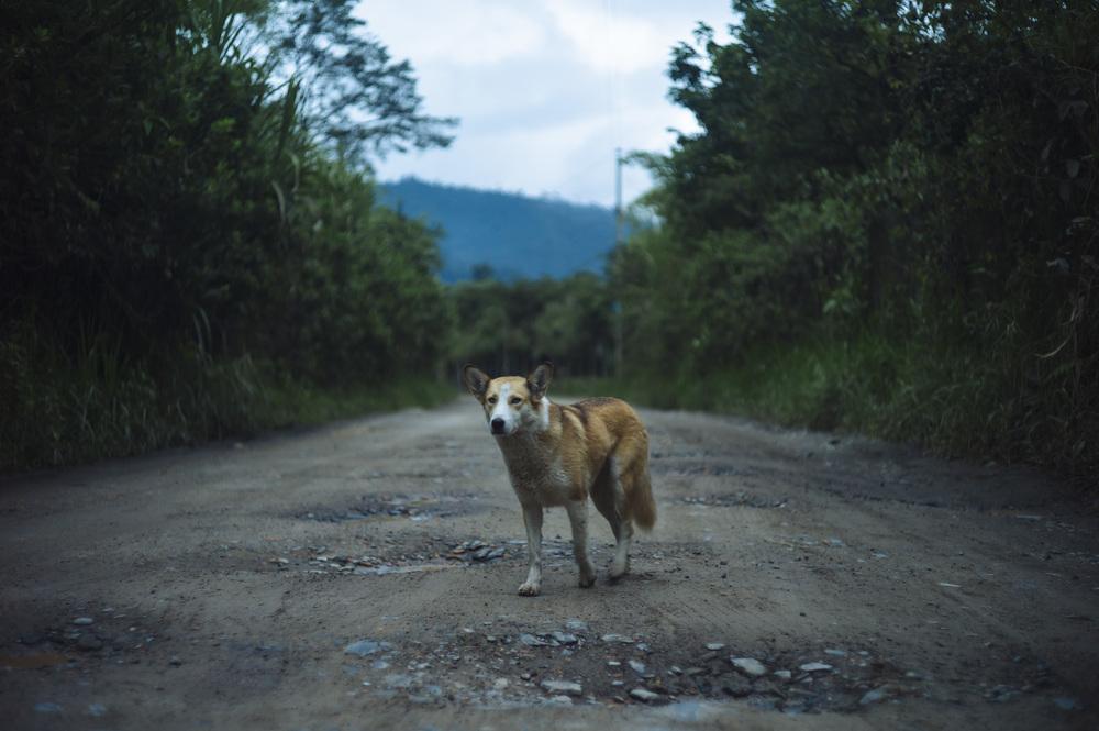 Ecuador-133.jpg