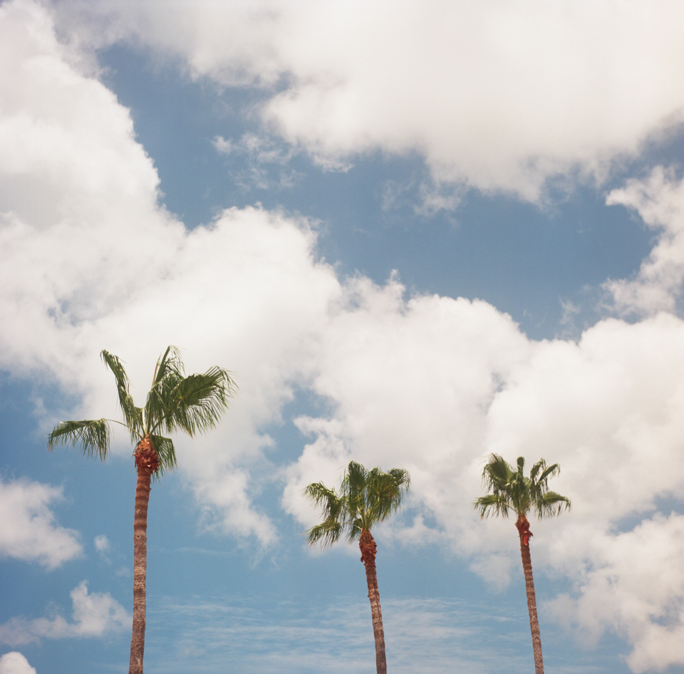 Sarasota-000066220006.jpg