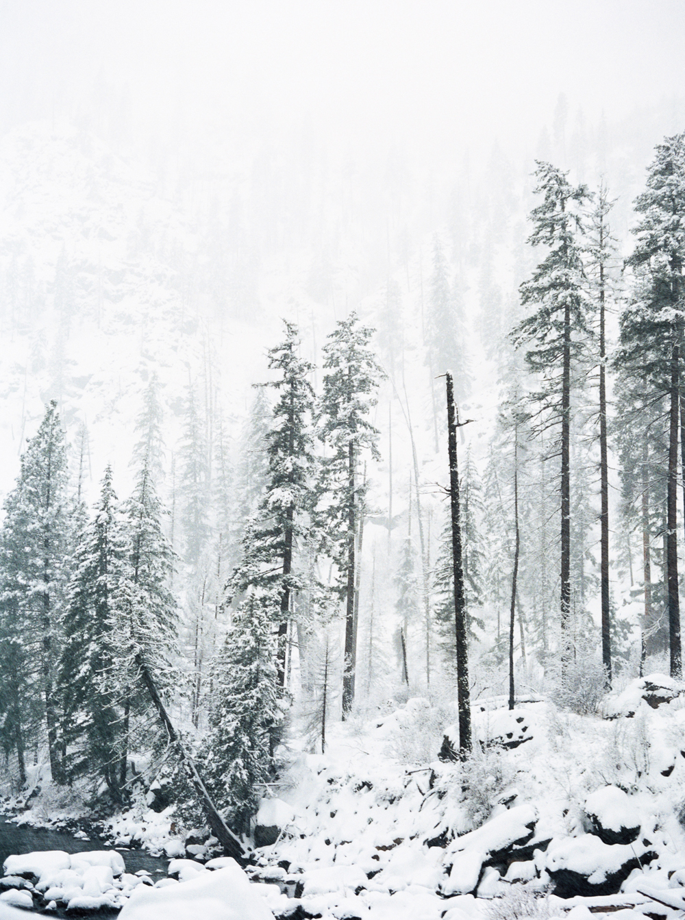 Winter in Wenatchee, Washington by Leilanika Abalos