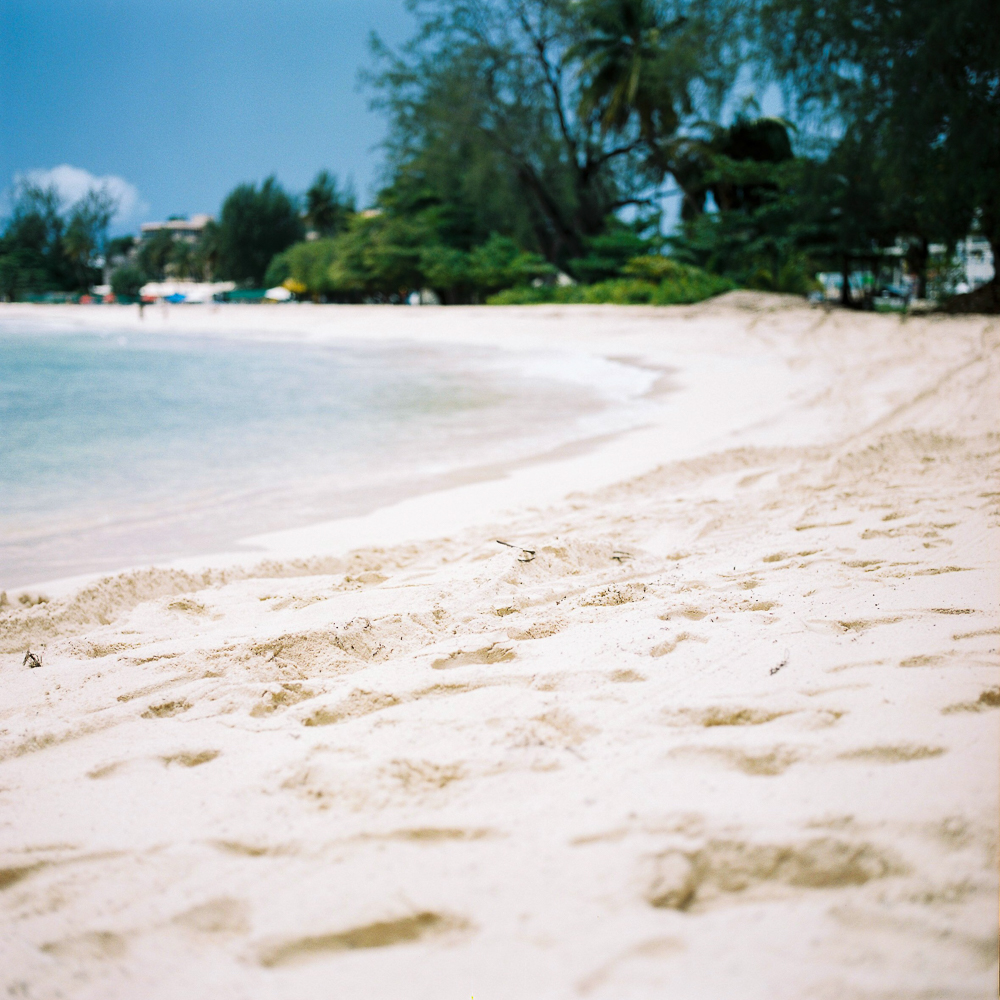 Sam Burton_Barbados 2015-14.jpg