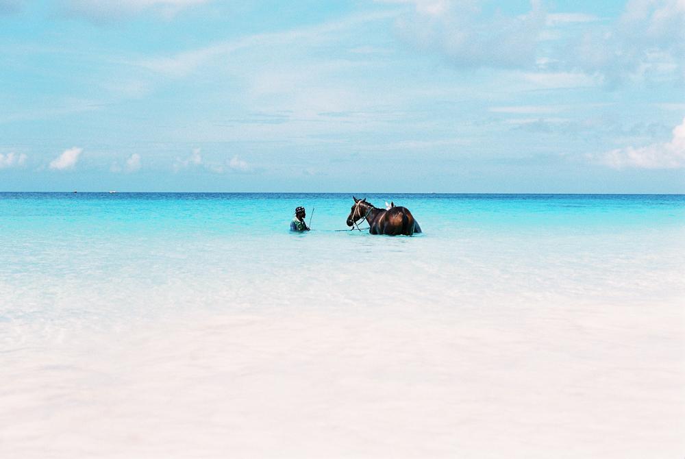 Sam Burton_Barbados 2015-320.jpg