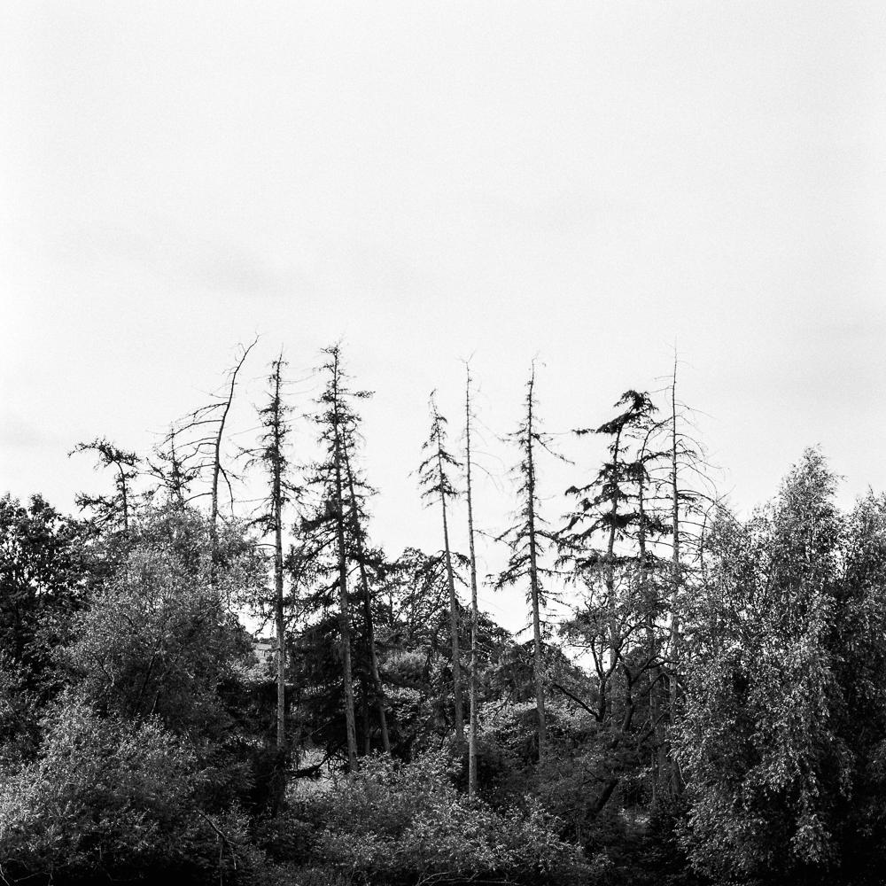 August15-47.jpg