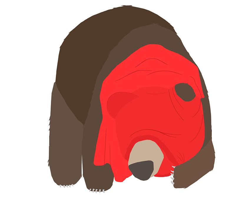 bear-4.png